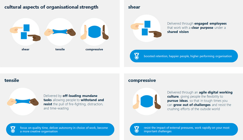 Cultural aspects of organisational strength